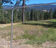 6' 6 inch Deer Fence With Galvanized Posts For The Line Posts And For The Top Rail